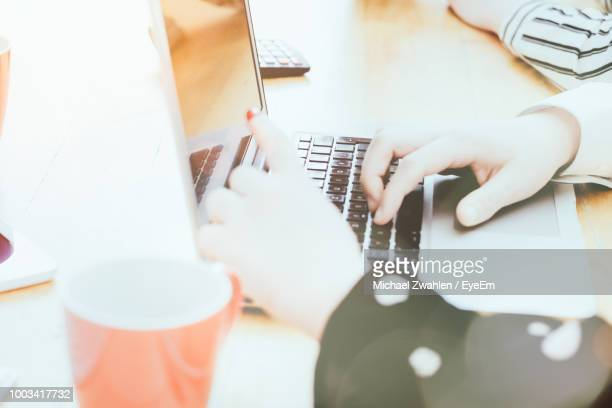High Angle View Of Businesswoman Pointing On Laptop Screen While Discussing With Colleague In Office