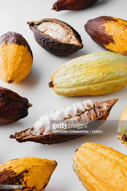 high angle view of cacao fruit on white background - theobroma stock-fotos und bilder