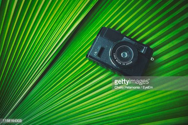 high angle view of camera on green leaf - digital camera stock pictures, royalty-free photos & images