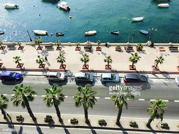 High Angle View Of Cars Parked By Palm Trees On Street