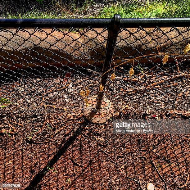 high angle view of chainlink fence on field with shadow - monty shadow - fotografias e filmes do acervo