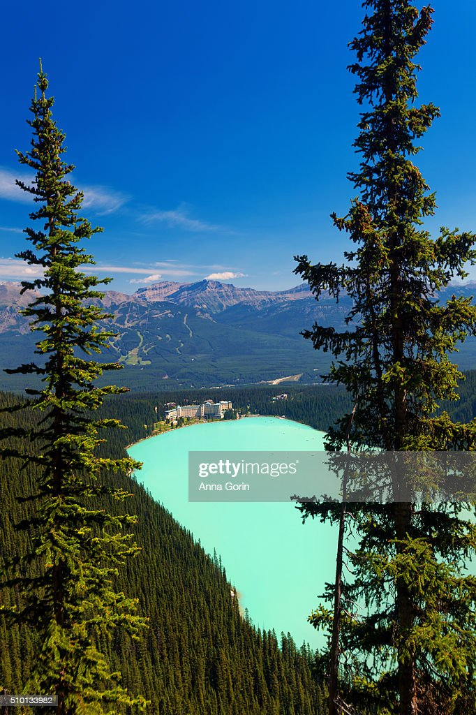 High angle view of Chateau Lake Louise and lake on clear summer day, seen from Plain of Six Glaciers Trail, Canada : Stock Photo