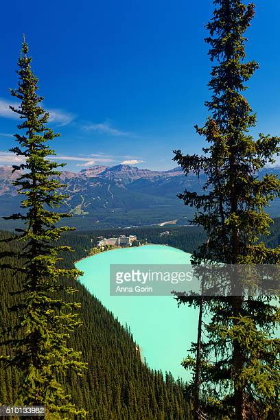 high angle view of chateau lake louise and lake on clear summer day, seen from plain of six glaciers trail, canada - chateau lake louise - fotografias e filmes do acervo