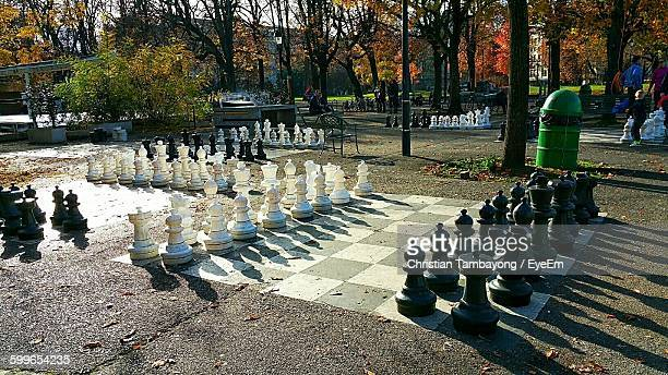 High Angle View Of Chess Pieces In Park