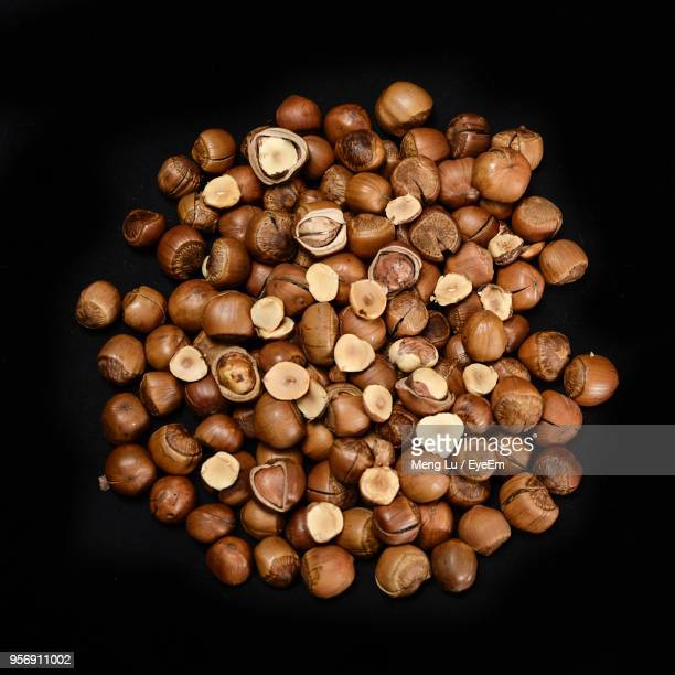 High Angle View Of Chestnut Against Black Background