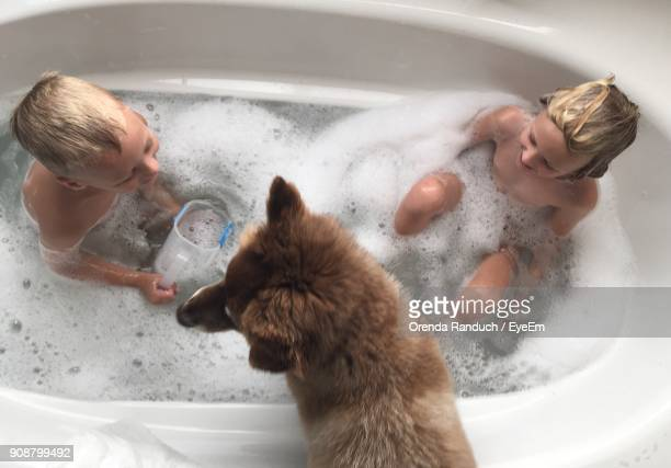 High Angle View Of Children And Dog In Bathtub