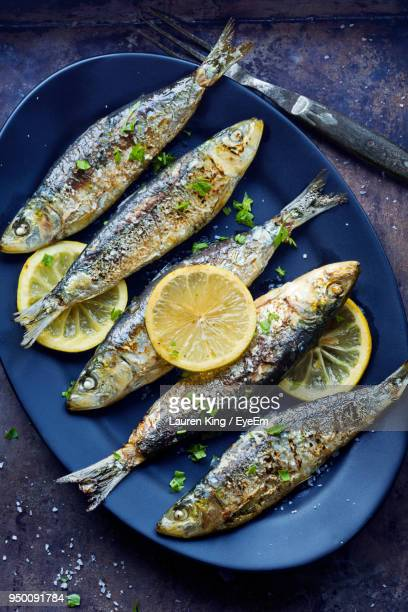 high angle view of cooked fish in plate on table - sardine foto e immagini stock