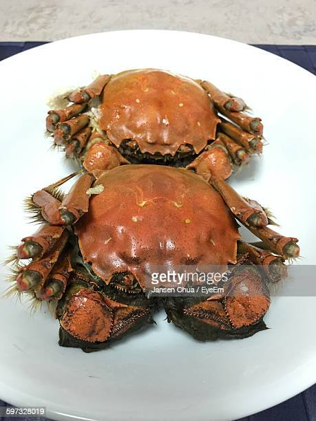 High Angle View Of Crabs Served In Plate On Table