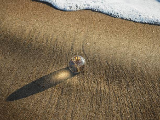 High Angle View Of Cristall Sphere On Beach