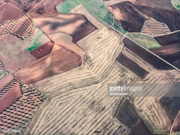 high angle view of cultivated land - bortes foto e immagini stock