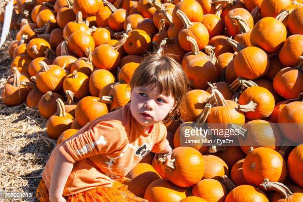 High Angle View Of Cute Girl Standing Against Pumpkins