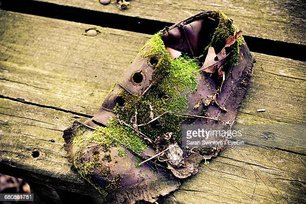 High Angle View Of Damaged Shoe With Moss On Bench