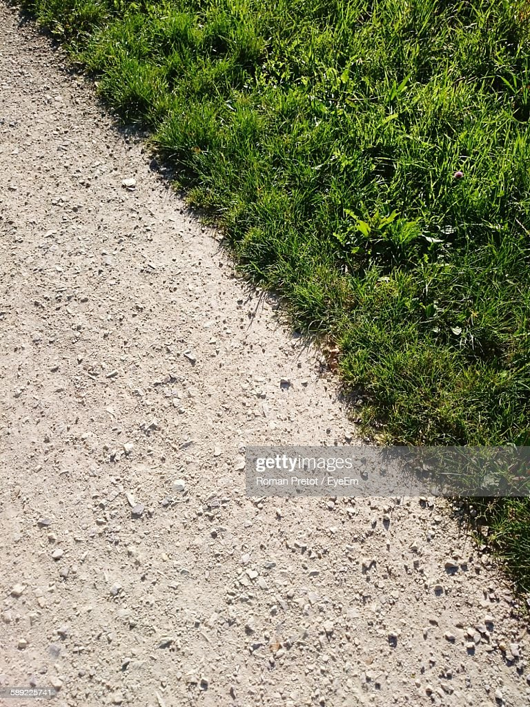 High Angle View Of Dirt Road By Green Grass : Stock Photo