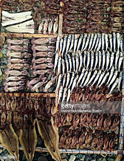 High Angle View Of Dried Fish