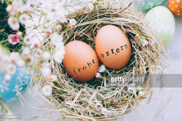 high angle view of easter eggs in nest on window sill - easter decoration ストックフォトと画像
