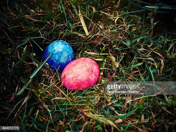 High Angle View Of Easter Eggs On Grassy Field