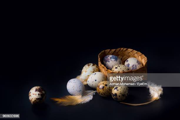 High Angle View Of Eggs Against Black Background