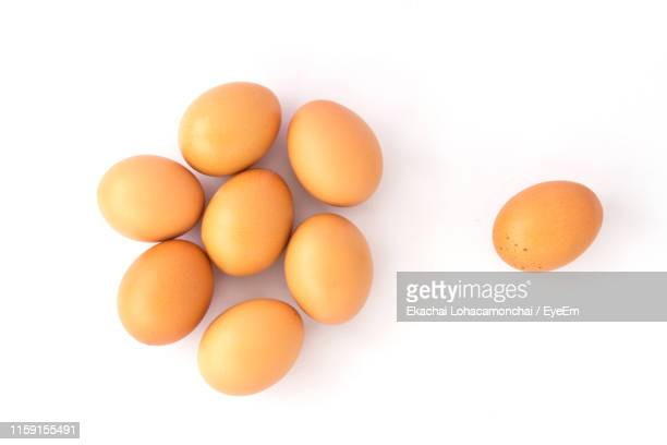 high angle view of eggs against white background - oeuf photos et images de collection