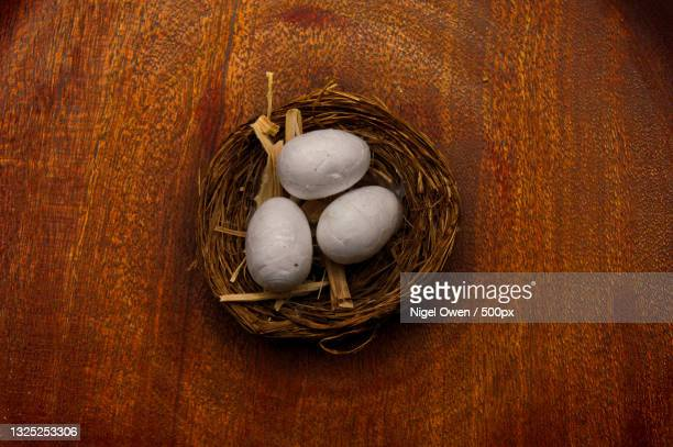 high angle view of eggs in nest - nigel owen stock pictures, royalty-free photos & images