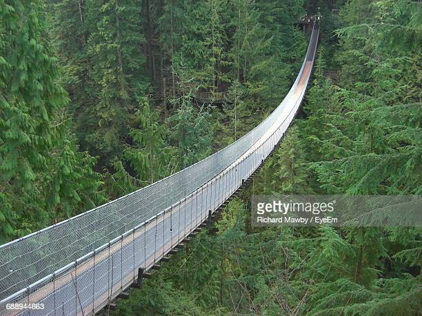 High Angle View Of Empty Capilano Suspension Bridge Amidst Trees