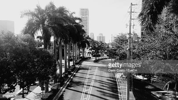 High Angle View Of Empty Road Amidst Trees In City