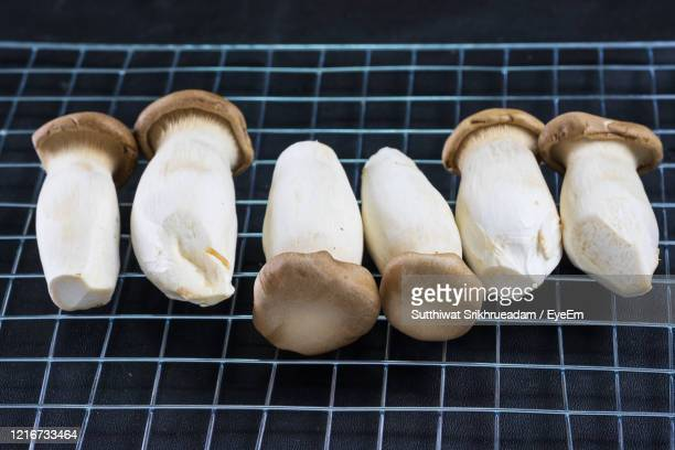 high angle view of eryngii mushrooms - king trumpet mushroom stock pictures, royalty-free photos & images
