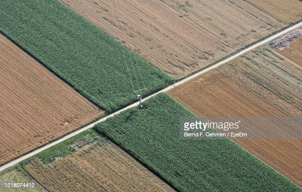high angle view of farm - bad homburg stock pictures, royalty-free photos & images