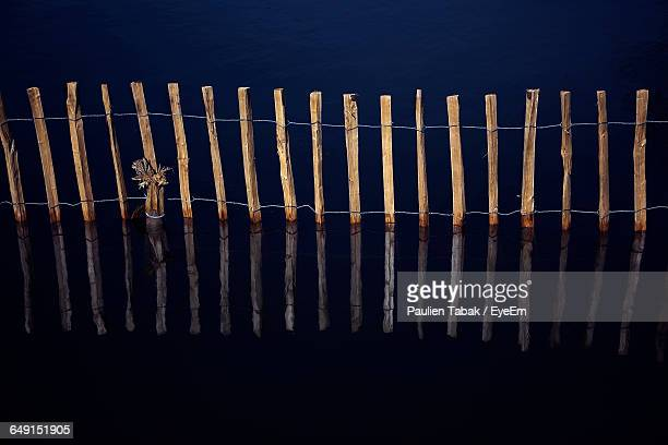 high angle view of fence reflecting in lake - paulien tabak stock photos and pictures