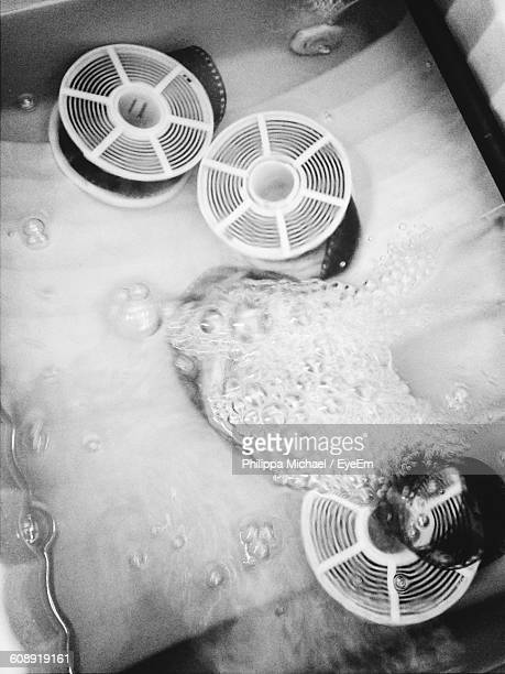 High Angle View Of Film Reels In Solution