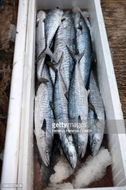 High Angle View Of Fishes In Box At Market