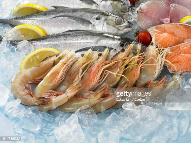 High Angle View Of Fishes On Crushed Ice