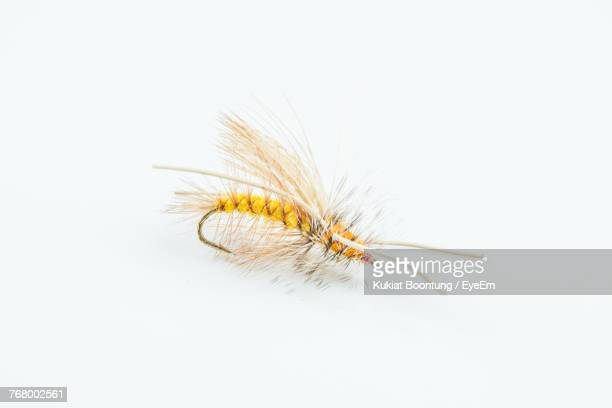 high angle view of fishing tackle over white background - fishing hook stock pictures, royalty-free photos & images