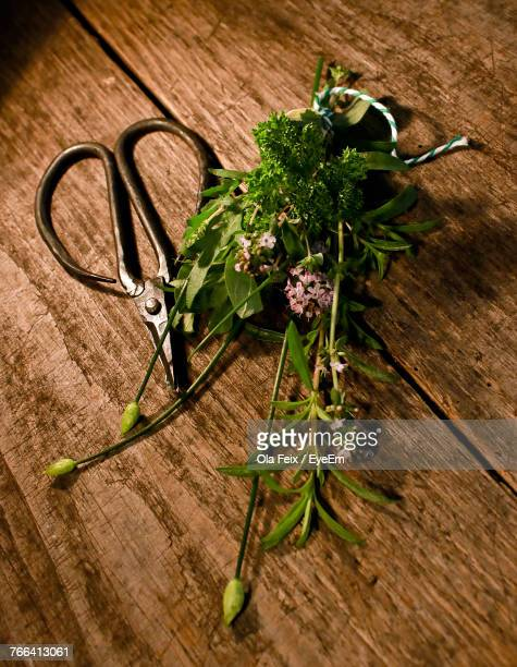 High Angle View Of Flower And Scissors On Wooden Table