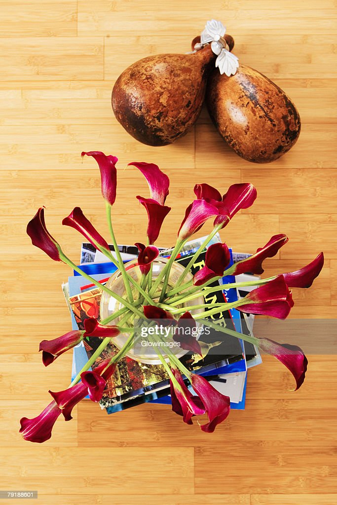 High angle view of flowers in a vase on a stack of books with dried gourds : Foto de stock