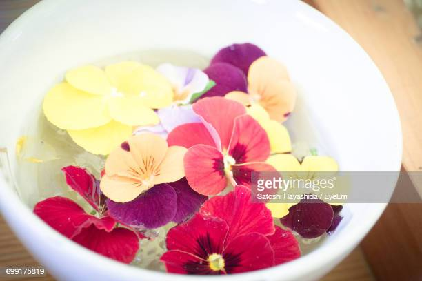 high angle view of flowers in bowl on table - ureshino saga stock pictures, royalty-free photos & images