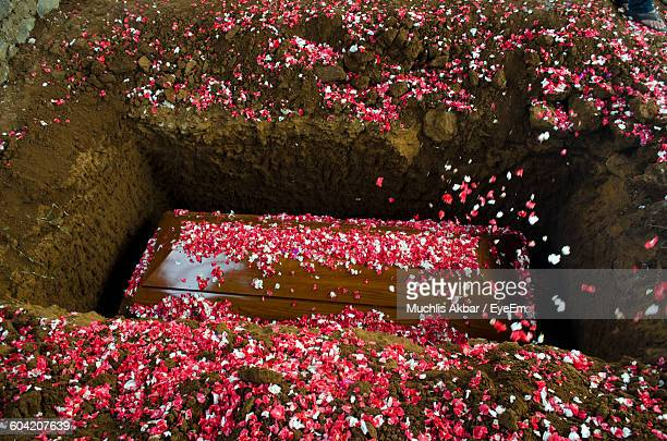 high angle view of flowers on coffin at cemetery - sarg stock-fotos und bilder