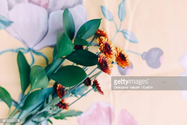 high angle view of flowers on table - oleksandr vakulin stock pictures, royalty-free photos & images