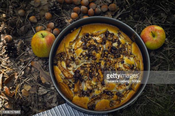 high angle view of food in bowl on field,germany - susanne ludwig stock pictures, royalty-free photos & images