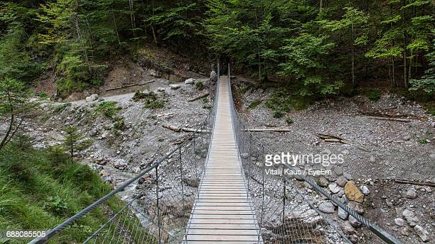 High Angle View Of Footbridge In Forest