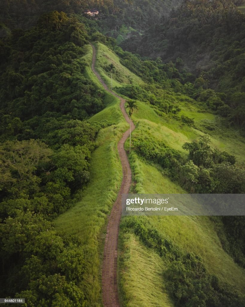 High Angle View Of Footpath On Green Landscape : Stock Photo