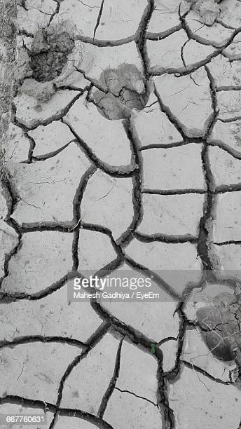 High Angle View Of Footprints In Cracked Soil