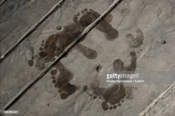 High Angle View Of Footprints On Boardwalk