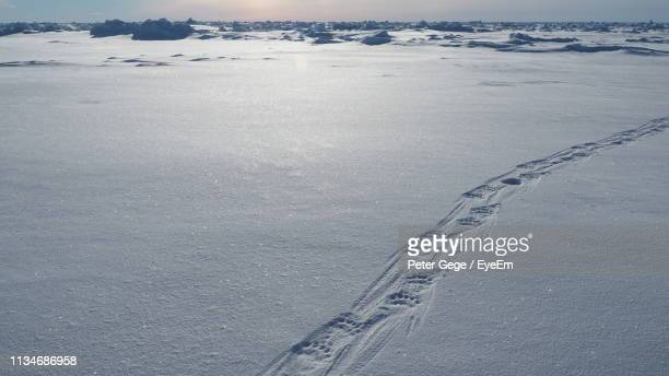 high angle view of footprints on snow covered land - peter snow stock pictures, royalty-free photos & images