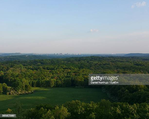 High Angle View Of Forest, City On Horizon