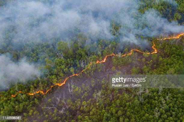 high angle view of forest fire - fire natural phenomenon stock pictures, royalty-free photos & images