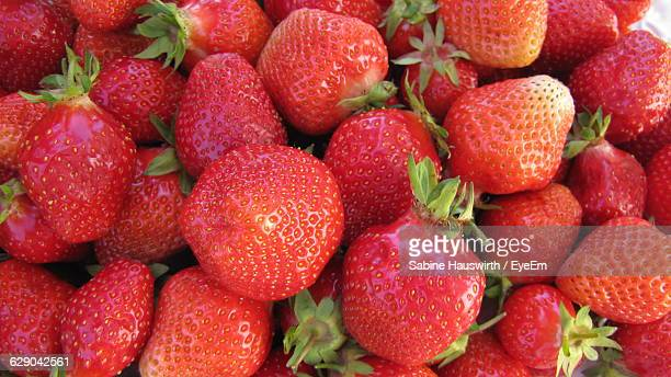 high angle view of fresh red strawberry fruits - sabine hauswirth stock photos and pictures