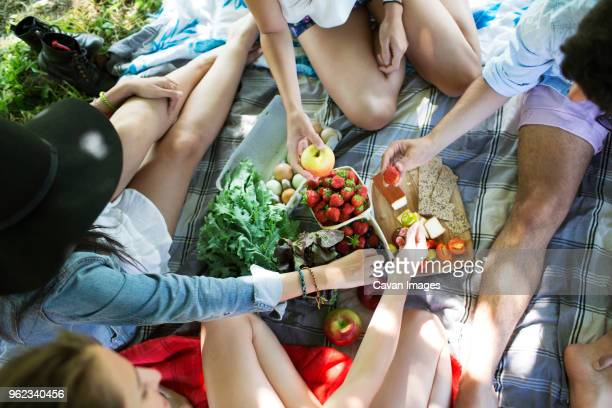 High angle view of friends eating food while sitting on picnic blanket