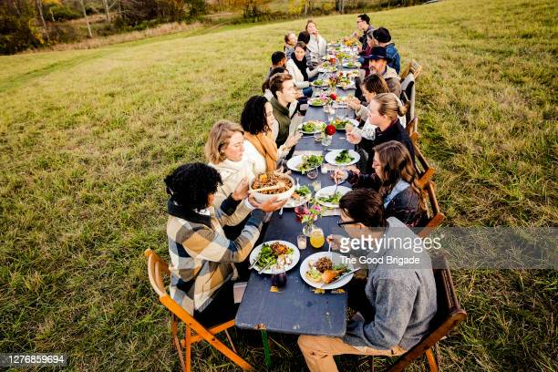 high angle view of friends enjoying meal at outdoor party - large group of people stock pictures, royalty-free photos & images