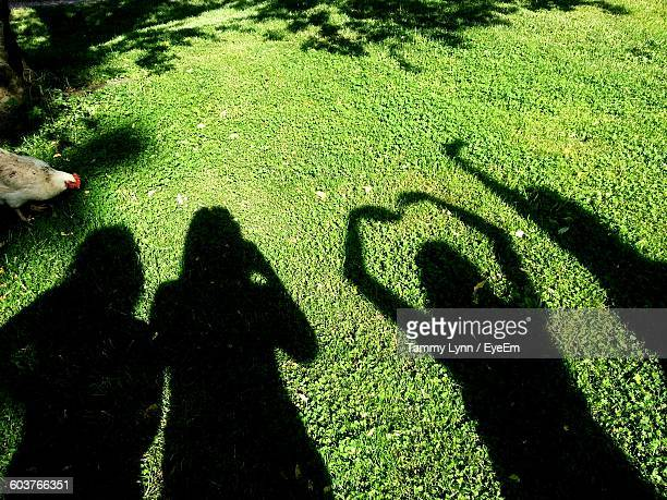 high angle view of friends shadow on grassy field - lynn pleasant stock pictures, royalty-free photos & images