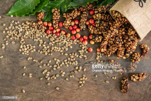 high angle view of fruits - civet cat stock pictures, royalty-free photos & images